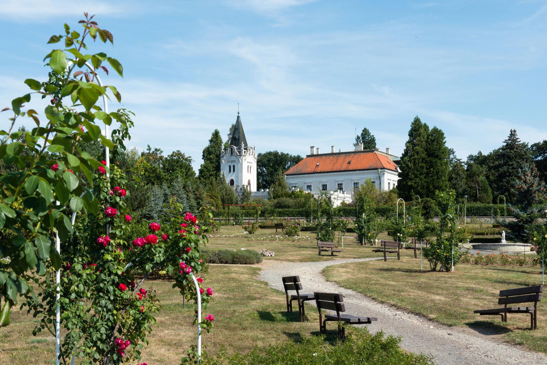 High quality hoto of Arboretum Mlynany - Slovakia