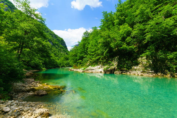 Quality photo of Tara River - Montenegro